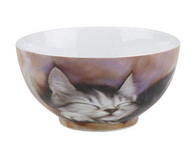 Sleeping kitten - bowl