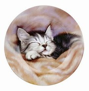Sleeping kitten - plate