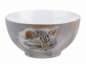 Tiger striped kitten - bowl